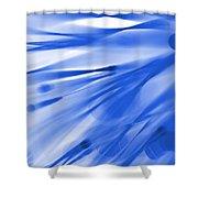 Roadhouse Blues Shower Curtain
