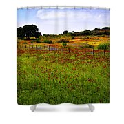 Roadside Flowers Shower Curtain