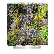 Roadside Waterfall. Mount Rainier National Park Shower Curtain