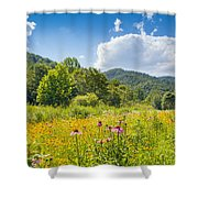 Roan Mountain State Park Shower Curtain