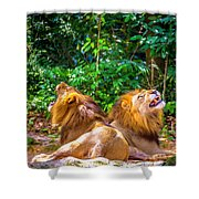 Roaring Lions Shower Curtain