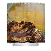 Roasted Steak In Traditional Kotlovina Dish Shower Curtain