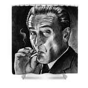 Robert De Niro Shower Curtain