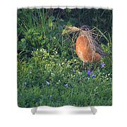 Robin Gathering For Nest Shower Curtain