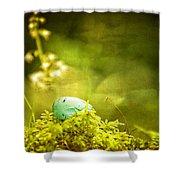 Robin's Egg On Moss Shower Curtain