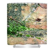 Rock Abstract 1 Shower Curtain