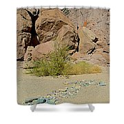 Rock Arrow And Terry Directing Into Ladder Canyon From Big Painted Canyon Trail In Mecca Hills-ca  Shower Curtain