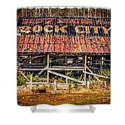 Rock City Shower Curtain