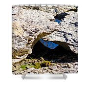 Rock Formation Devonian Fossil Gorge Shower Curtain
