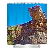 Rock Formation Higher Than Fan Palms Along Lower Palm Canyon Trail In Indian Canyons Near Palm Sprin Shower Curtain
