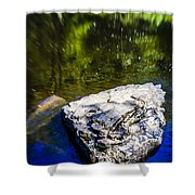 Rock In The Water Shower Curtain