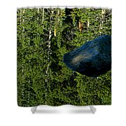Rock Out Of Reflecting Lake Shower Curtain
