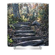 Rock Stairs Shower Curtain