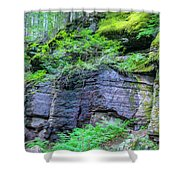 Rock Wall Trail Of The Cedars Glacier National Park Painted Shower Curtain