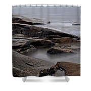 Rockport Seagull Shower Curtain