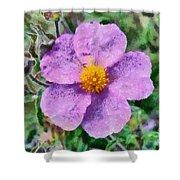 Rockrose Wild Flower Shower Curtain