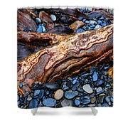 Rocks And Roots Shower Curtain