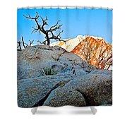 Rocks In Sun And Shade Along Barker Dam Trail In Joshua Tree Np-ca- Shower Curtain
