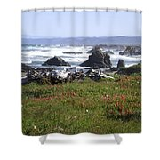 Rocks In The Water Shower Curtain