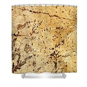 Rockscape 11 Shower Curtain