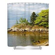 Rocky Coast In Maine Shower Curtain