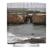 Rocky Coast Shower Curtain