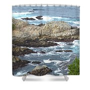 Rocky Cove Detail Shower Curtain