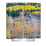 Rocky Mountain Autumn Contrast Shower Curtain by James BO  Insogna