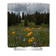 Rocky Mountain Bloom Shower Curtain