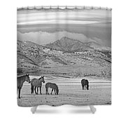 Rocky Mountain Country Morning Bw Shower Curtain