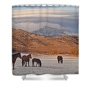 Rocky Mountain Country Morning Shower Curtain
