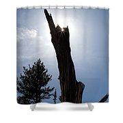 Rocky Mountain Obelisk Shower Curtain