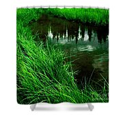 Rocky Mountain Pond Shower Curtain