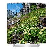 Rocky Mountain Summer Landscape Shower Curtain