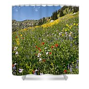Rocky Mountain Wildflower Landscape Shower Curtain