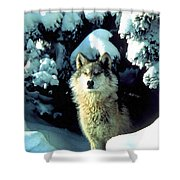 Rocky Mountain Wolf Shower Curtain