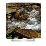 Rocky River 2 Shower Curtain