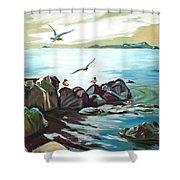 Rocky Seashore And Seagulls Shower Curtain