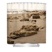Rocky Shore 2 Shower Curtain