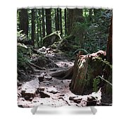 Rocky Trail Shower Curtain
