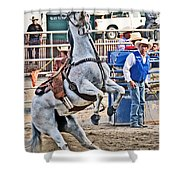 Rodeo Horse Cheers Shower Curtain