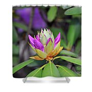 Rododendro Shower Curtain