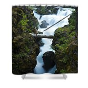Rogue River Falls 1 Shower Curtain