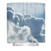 Roiling Shower Curtain