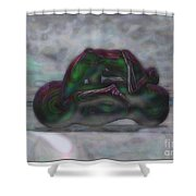 Roller-play-time Shower Curtain
