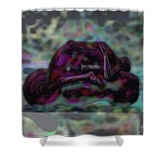 Roller_play Shower Curtain