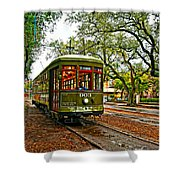 Rollin' Thru New Orleans Painted Shower Curtain