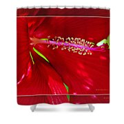 Rolling Hills 6 Shower Curtain