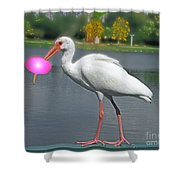 Rolling Roger Stick Ball Shower Curtain