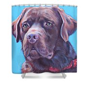 Rolo Shower Curtain